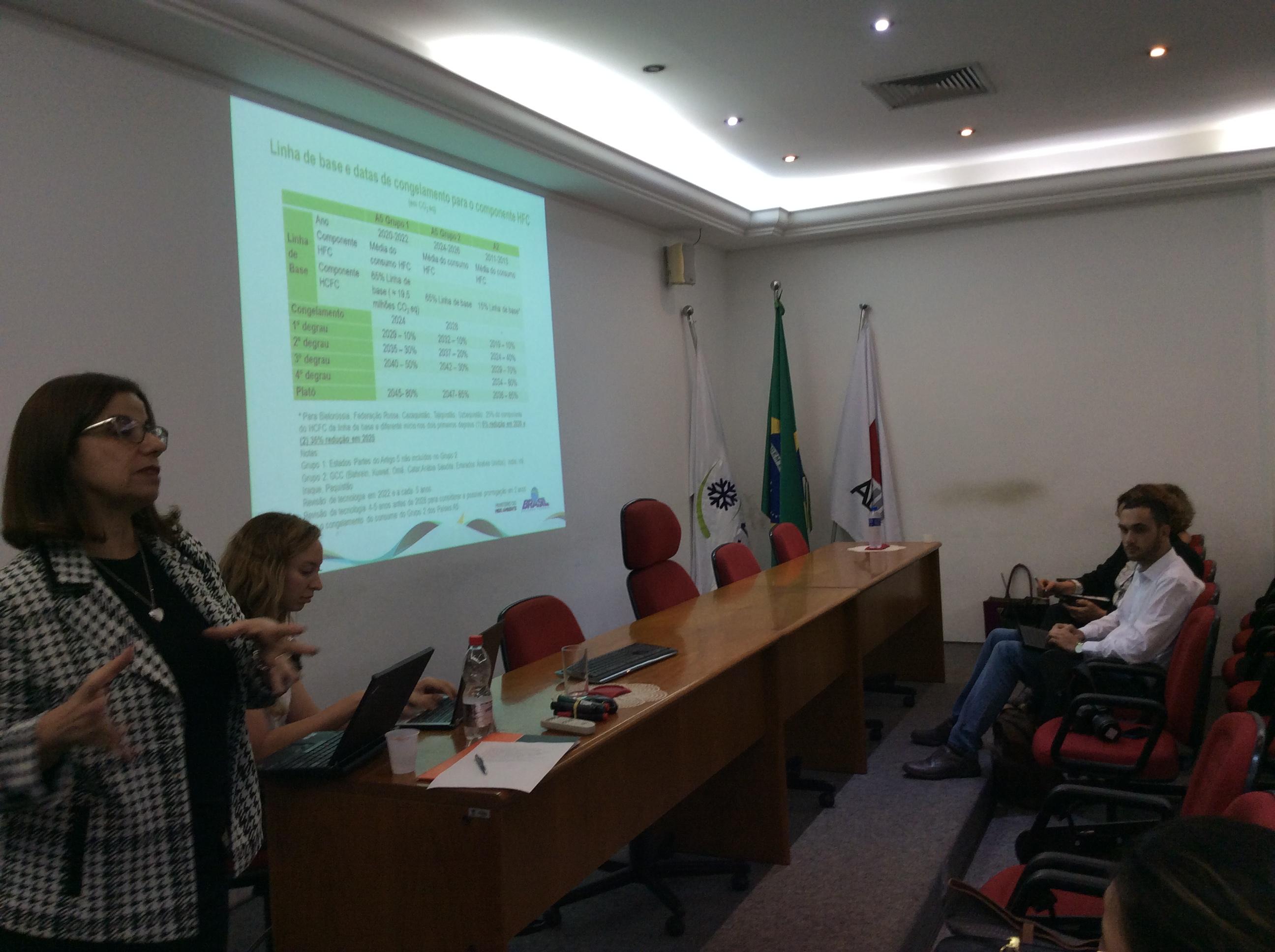 14a Reunião do GT-HCFCs debate impactos no Brasil da emenda de Kigali